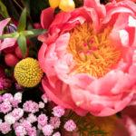 Detalle de la flor