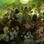 Ramos frondosos de flores silvestres